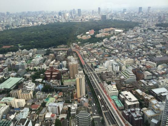 Park Hyatt Tokyo: view 46th floor room 4608