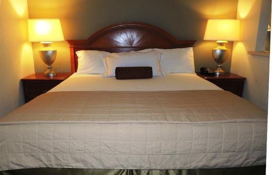 Guest House Hotel Gainesville Ga