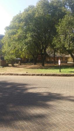 This is beutiful.ngwenya lodge is a nice place to stay.its lovely.I enjoyed with my family