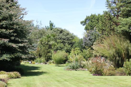 Tropique picture of le jardin du pellinec penvenan - Jardin du pellinec ...