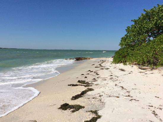 North Captiva Island, FL: Beach