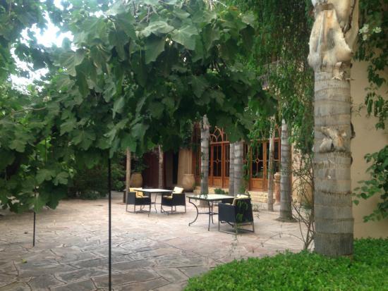 Jardin Picture Of La Maison Arabe Marrakech Tripadvisor - Jardin-arabe