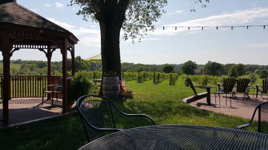 Smithville, MO: Ladoga Ridge Winery
