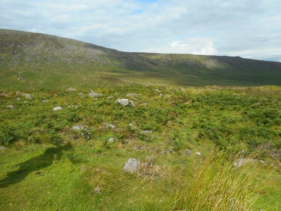 Comeragh Drive : View from the Trail