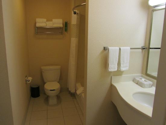 Hampton Inn & Suites Langley Surrey: Spacious bath