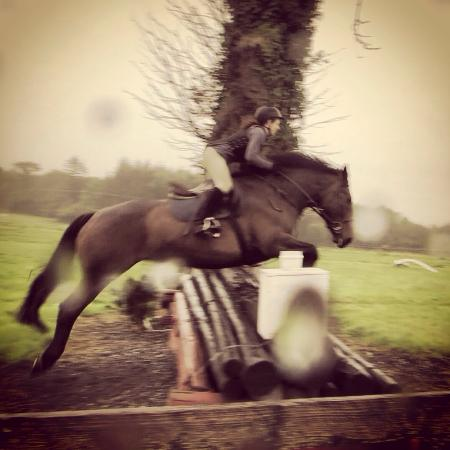 Flowerhill Equestrian Centre: photo0.jpg