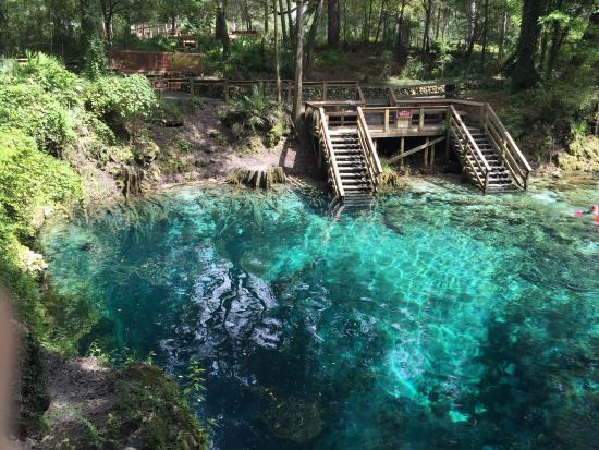 ‪Madison Blue Springs State Park‬