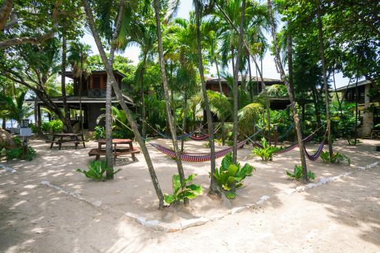 Bananarama Beach and Dive Resort: Island Pearl Courtyard