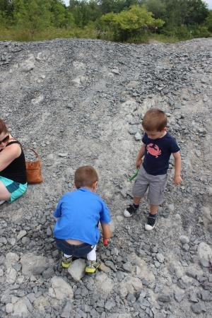 Penn Dixie Fossil Park And Nature Reserve In Blasdell