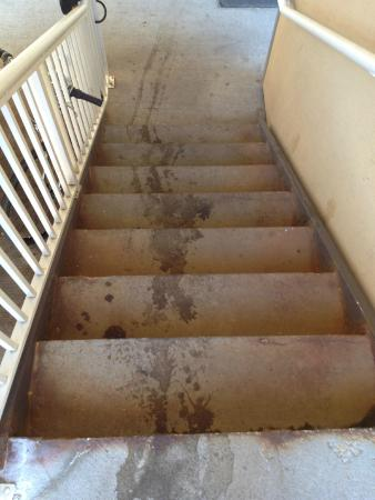 Extended Stay America - Denver - Tech Center - North: Stairs going down to parking lot