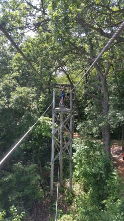 Tree Tops High Ropes Course: view between 2 towers