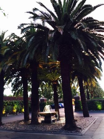 Menlo Park, CA: photo3.jpg