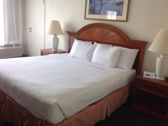 Rodeway Inn Miami: Bed was clean and comfortable.