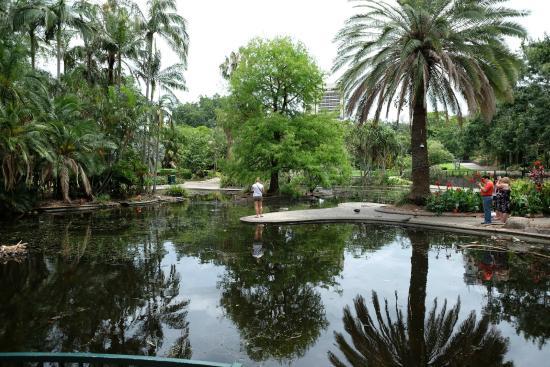 City Gardens Cafe Brisbane