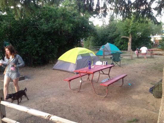 Missoula KOA: Wide open campsites.