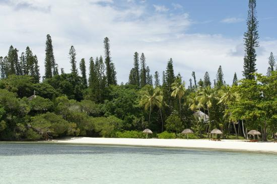 transat de plage picture of le meridien ile des pins ile des pins tripadvisor
