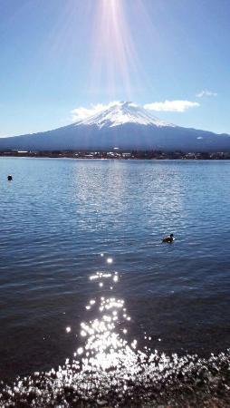 Lakeside Kawaguchiko Sunnide Resort : 2015.1.1サニーデ・リゾートからの富士山