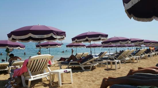Punta Cana Beach Le Lavandou Restaurant Reviews Phone Number