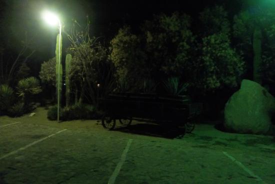 Desert Inn Catavina : Vista del jardin