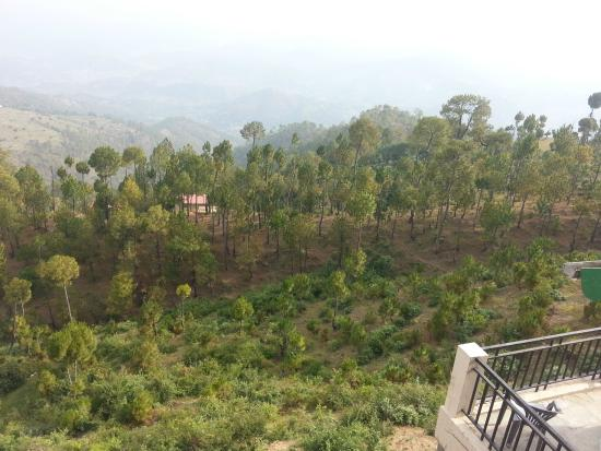 Himalayan Anchor: View from room