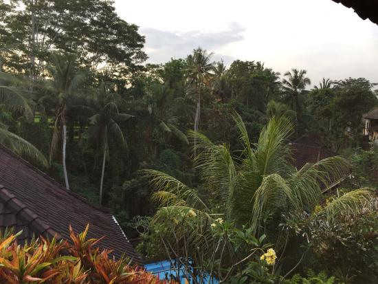 Gustis Garden Bungalows: photo1.jpg