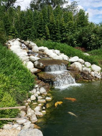 Cascade photo de les jardins aquatiques saint didier sur chalaronne tripadvisor for Creation d un etang de jardin