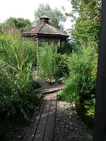 D paysement assur photo de les jardins aquatiques - Les jardins aquatiques saint didier sur chalaronne ...