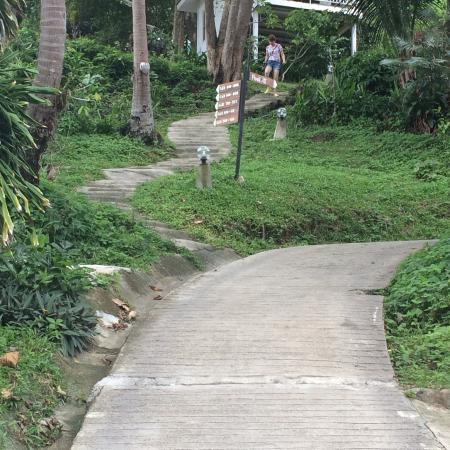 Bay View Resort: Camino