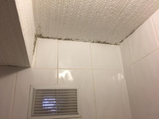 The Savona Hotel Skegness : What can I say!! A free rusty razor in the smallest worst shower I have ever been in! The mould