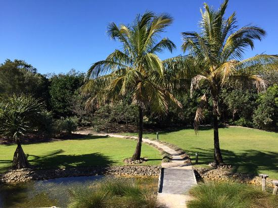 Casuarina, Australien: View from the room