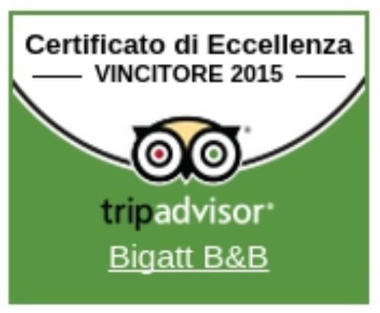 Bigatt B&B: TA Excellence award
