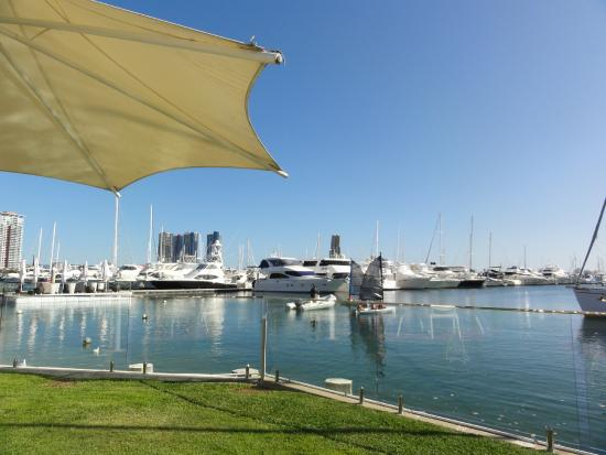 Yacht Club: View From Restaurant