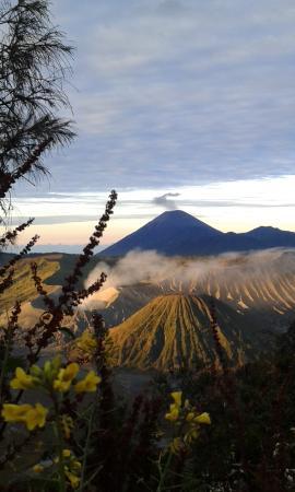 Bali Agus Voyage - Day Tours