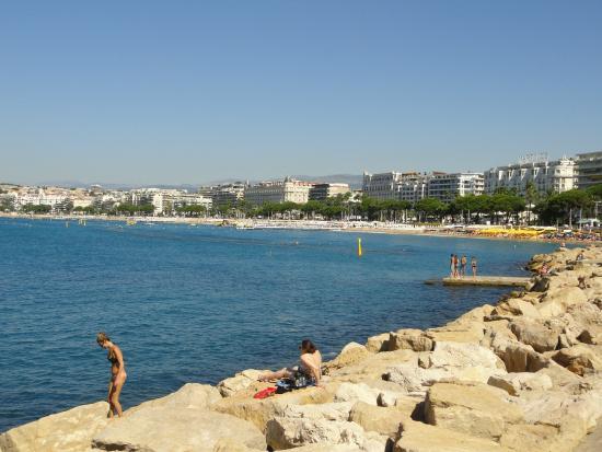 plage de Cannes - Picture of Camping La Pierre Verte, Frejus ...