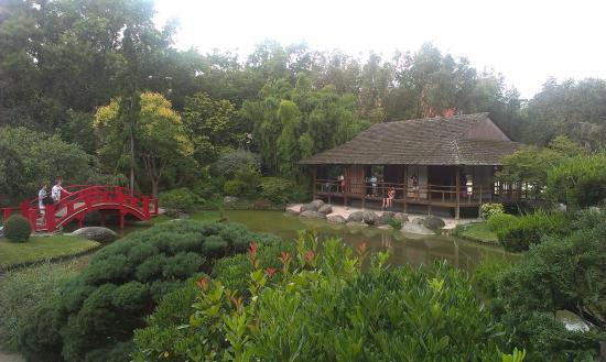 Lac picture of jardin japonais toulouse tripadvisor for Jardin japonais toulouse
