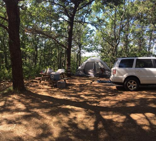 Horton's Camping Resort: Site 175