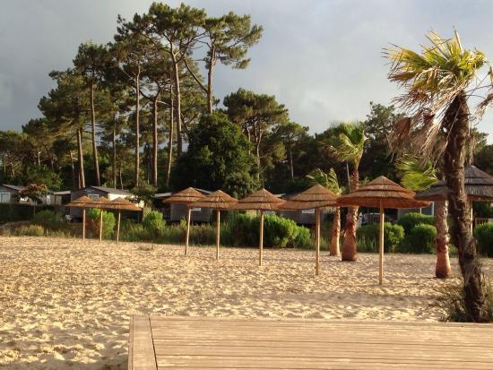 Camping Airotel Les Viviers: Ma vue des viviers !