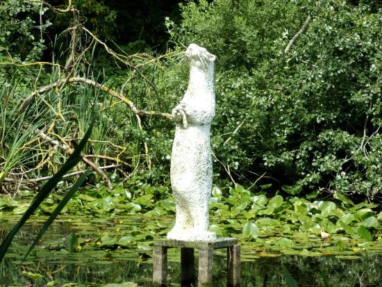 Blankaart Nature Reserve: De Otter, l'emblème du centre nature