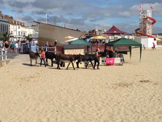 Weymouth, UK: Donkey Rides for Children