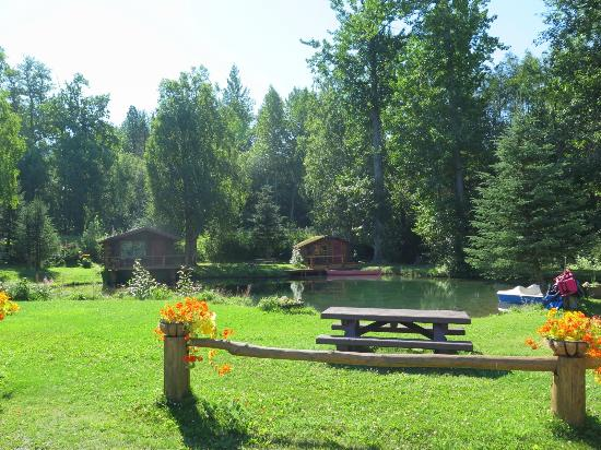 Bowman's Bear Creek Lodge: View from cabin