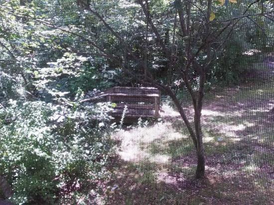 Harmonie State Park: outside porch...