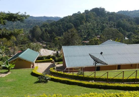Avocado Lodge: Morgendlicher Blick auf die Anlage