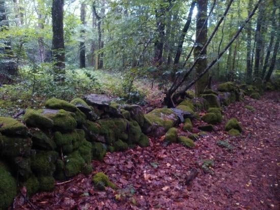 Franseches, Francia: promenade vers la Pierre Tournaire