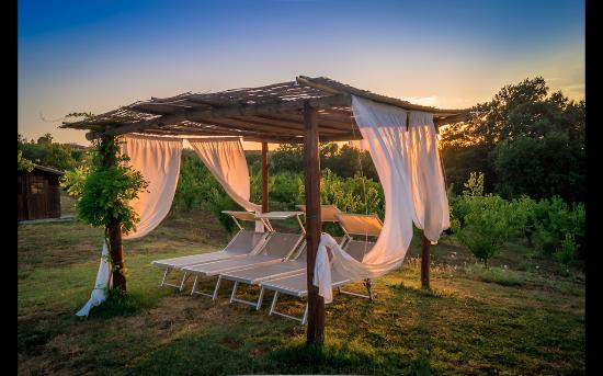 Podere Costantino: Sunset by the pool