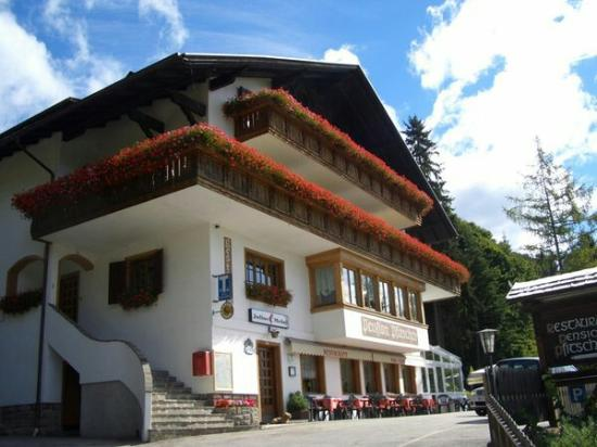 Berggasthof Pension Pfitscher