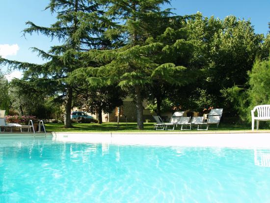 Agriturismo La Loccaia : Farm House La Loccaia in Tuscany with Swimming pool