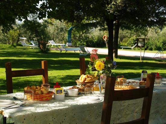 Agriturismo La Loccaia : Breakfast in the garden at Farmhouse La Loccaia in Tuscany with swimmingpool