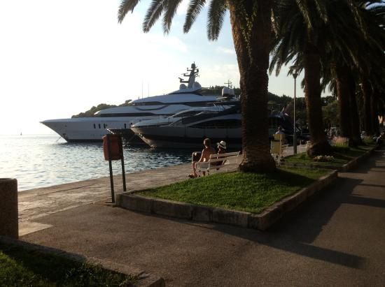 Villa Ivy : Cavtat offers numerous restuarants and millionaires yachts to admire.