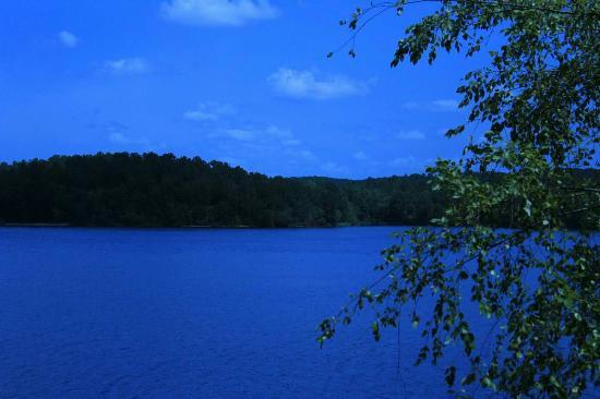 Winnsboro, Carolina del Sud: Beautiful  camping location!