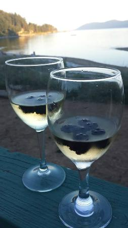 Seabreeze Resort: Wine & Fresh Blackberries on the deck...